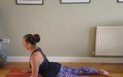 Sphinx | Yoga Pose