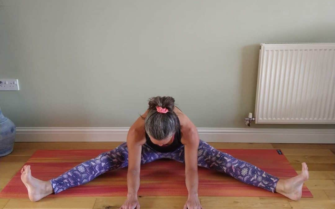 Wide Angle Forward Fold Yoga Pose