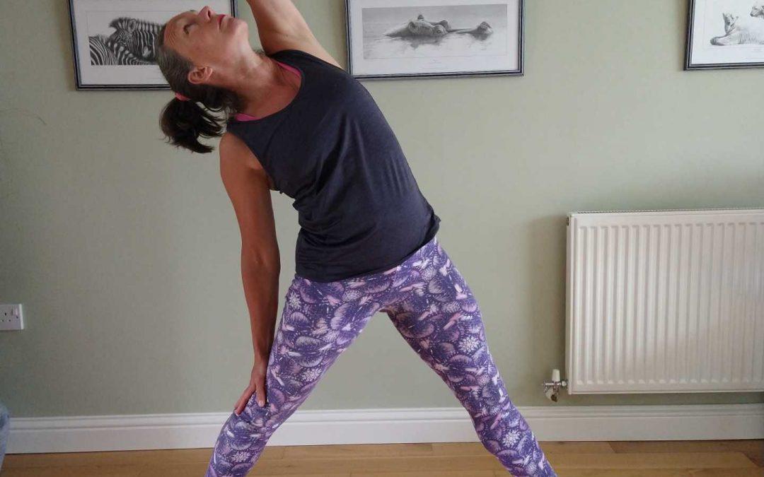 Reverse Triangle Yoga Pose