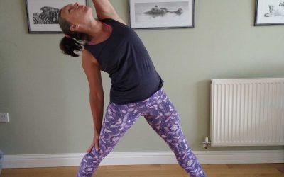 Reverse Triangle | Yoga Pose