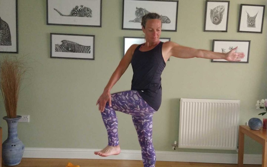 Twisted Knee Lift Yoga Pose