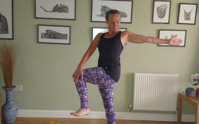 Twisted Knee Lift Yoga Pose