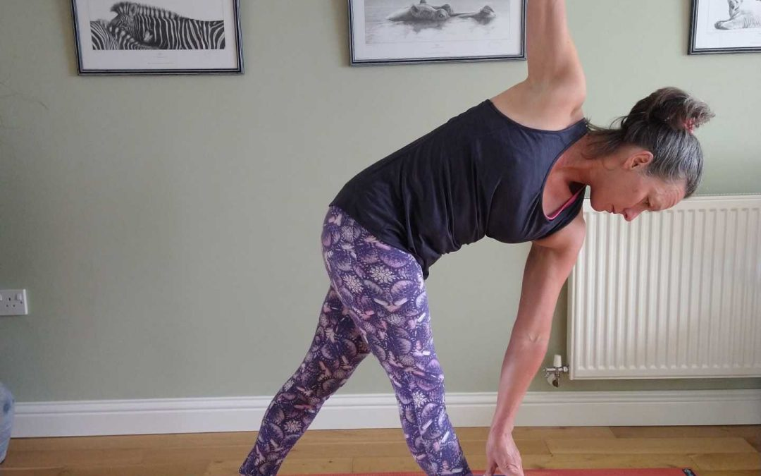 Twisted Triangle Yoga Pose